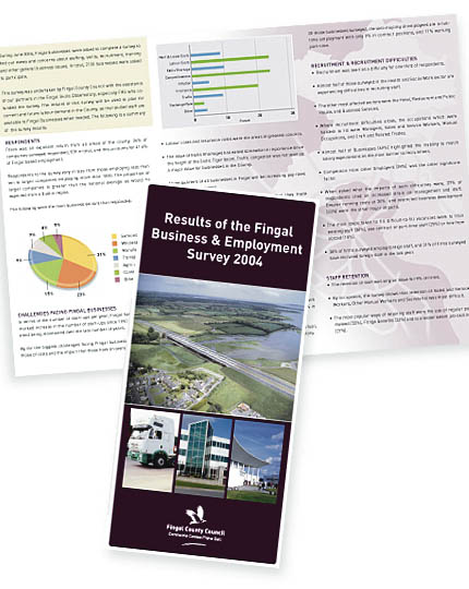 Fingal 2004 business survey report